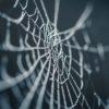 蜘蛛の巣 SPIDER'S WEB  アガサ・クリスティ 加藤恭平 訳